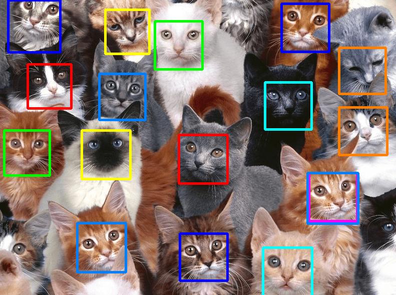 VISIONARY_cats_LBP_HOG_hard