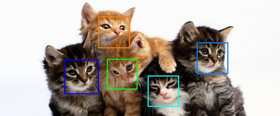 VISIONARY_cats_LBP_HOG